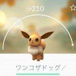 pokemon_wanko